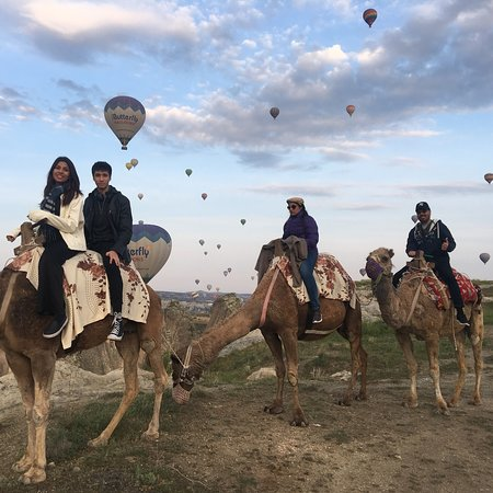 cappadocia-camel-tours